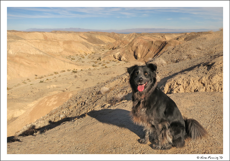 Polly poses at the top of Calcite Mine Trail