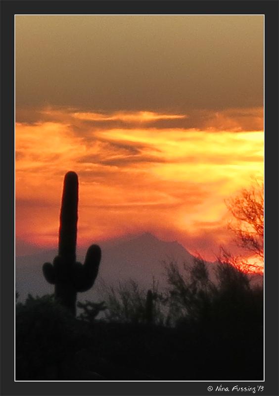 Just another fiery desert sunset