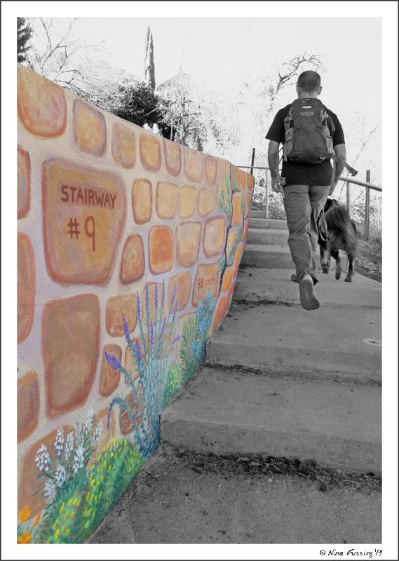 Tackling staircase #9