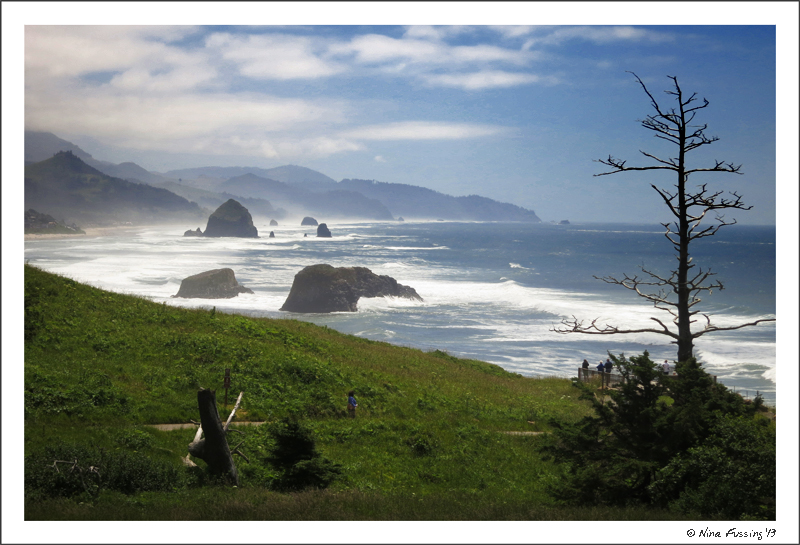 The stunning view from Ecola Point