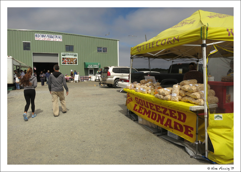 Paul and Alex stroll into Bandon's Farmers Market