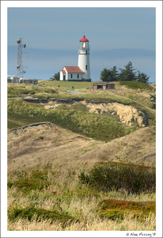 Gorgeous Cape Blanco Lighthouse