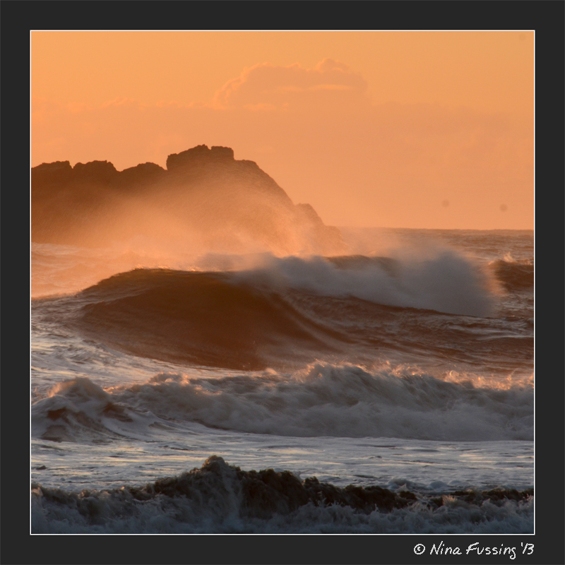 Wild waves in evening light
