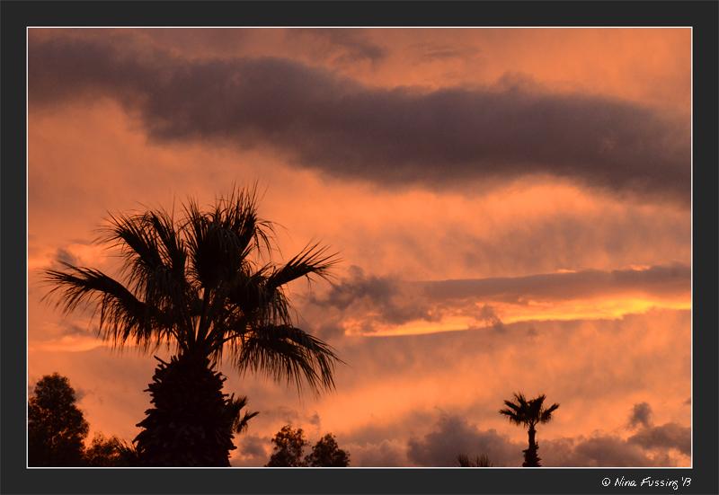 N-20131124 DHS Sunset (2) (JPG)