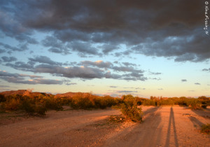 Long shadows and a dark day at Why, AZ