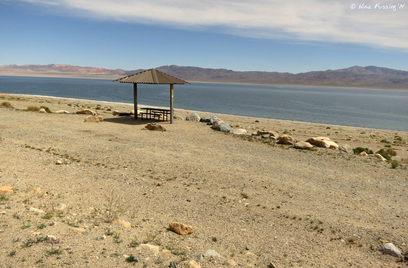 Blm Campground Review Walker Lake Recreation Area