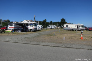View of sites near entrance of park. RV on left in site 358 with sites 357-349 next to it.