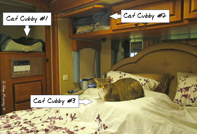"""We have 3 """"cat cubby"""" spots in the bedroom"""