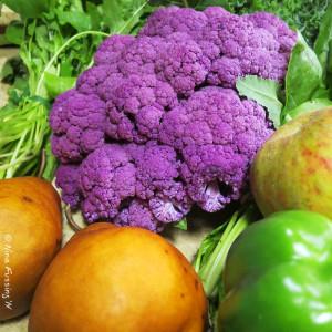 20141024-C Farmers Market (7) (JPG2)